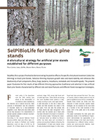 02-SelPiBioLife for black pine - Sherwood225